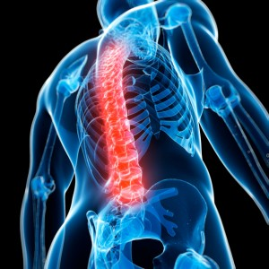Spinal Cord Injury Claims help